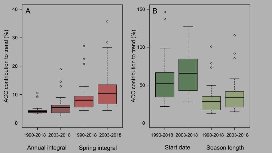 """A mudança climática """"piorou"""" a temporada de pólen da América do Norte"""