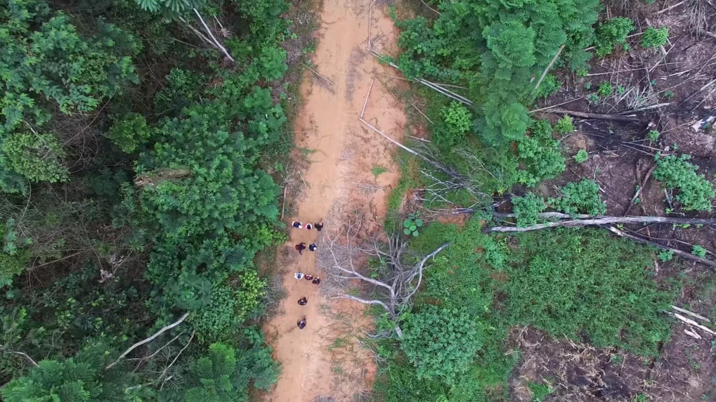 Indígenas na Amazônia usam dados de satélite, smartphones, drones para combater a exploração madeireira ilegal