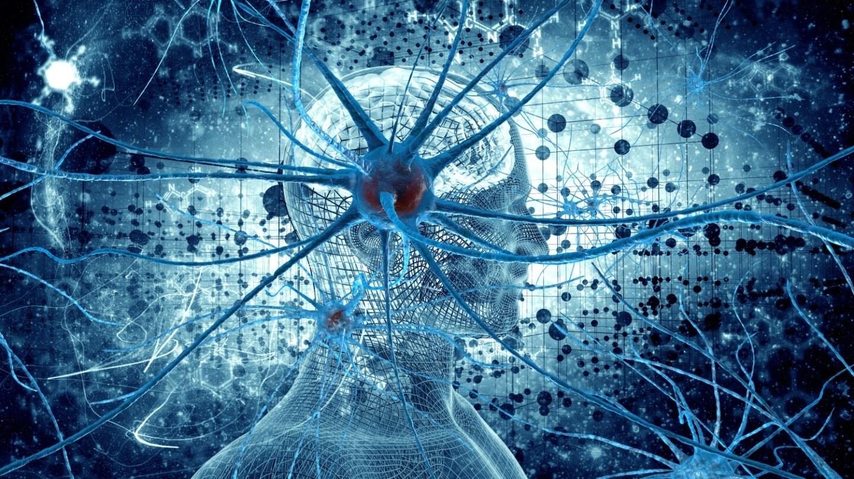 Uma rede artificial mantida na 'Borda do Caos' age como um cérebro humano